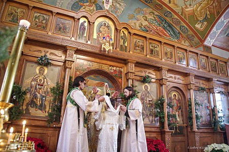 Holy Virgin Protection Cathedral - Des Plaines, IL